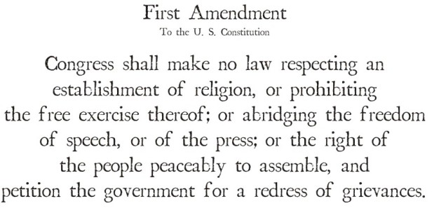 right to petition amendment amendment 1 freedom of speech thinglink 9016