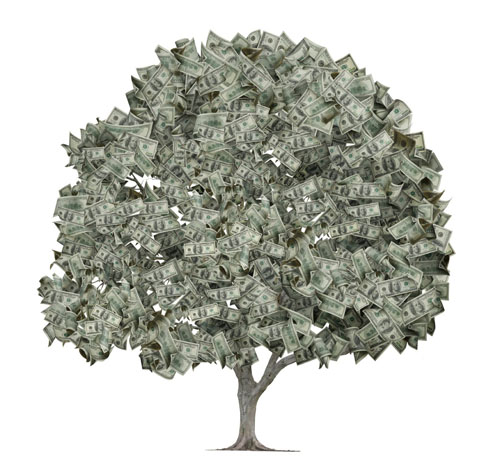 A money tree growing on a top secret U.S. military base in Canada.