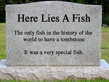 Tombstone4
