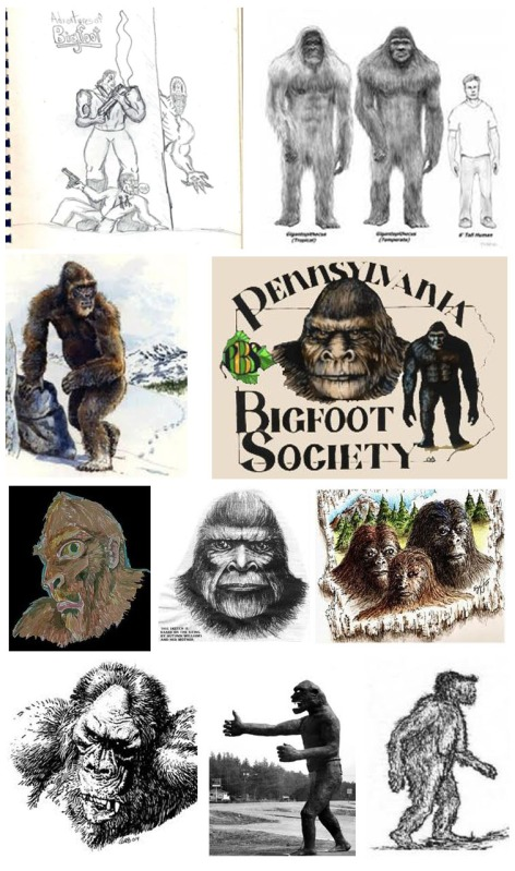 An array of Bigfoot illustrations.