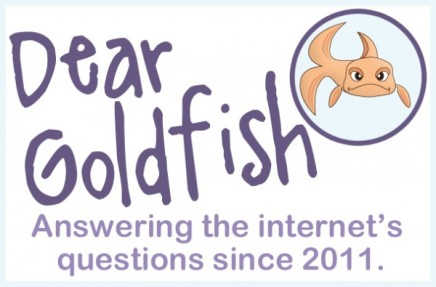Dear Goldfish Part 27: Advice Edition