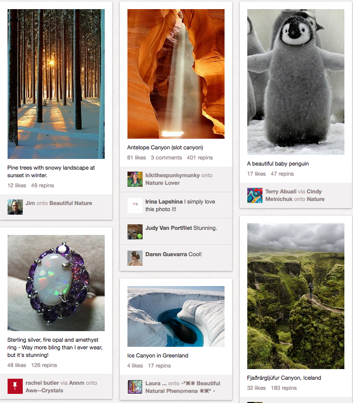A forest, a ring, Antelope Canyon, Greenland,  penguin, Iceland.