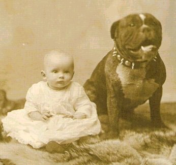 Pit Bull with baby, 1892. Image from pt.wikipedia.org.