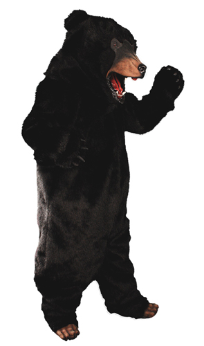 Image from costumekingdom.com