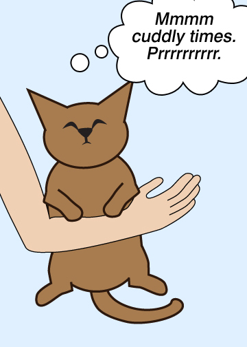 Dog Cat Spoon Gif
