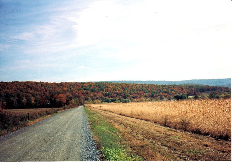Fall_Country_Road_(Macadam)
