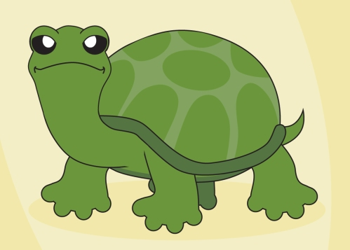 turtleturtle