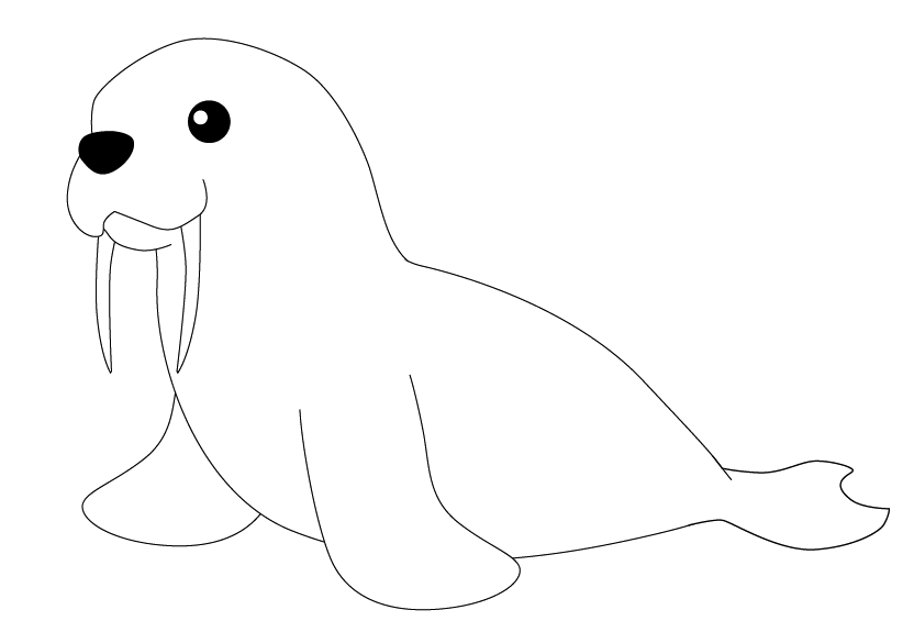 Walrus drawing easy - photo#10