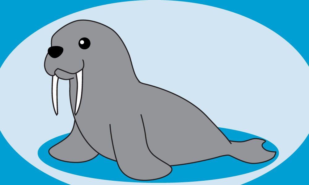 Cute Walrus Drawing | www.pixshark.com - Images Galleries ...