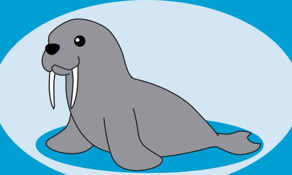 walrus.sm