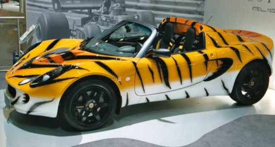Lotus Elise Tiger Sports Car (allfastcars.com)