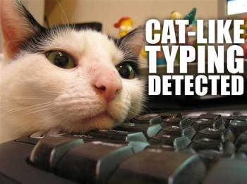 cat-like_typing