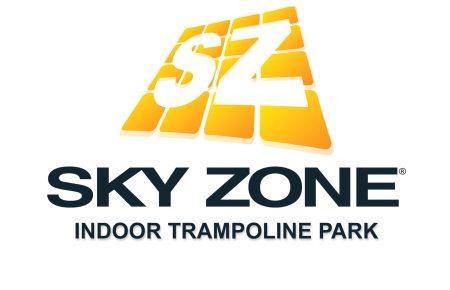 Skyzone Logo With R