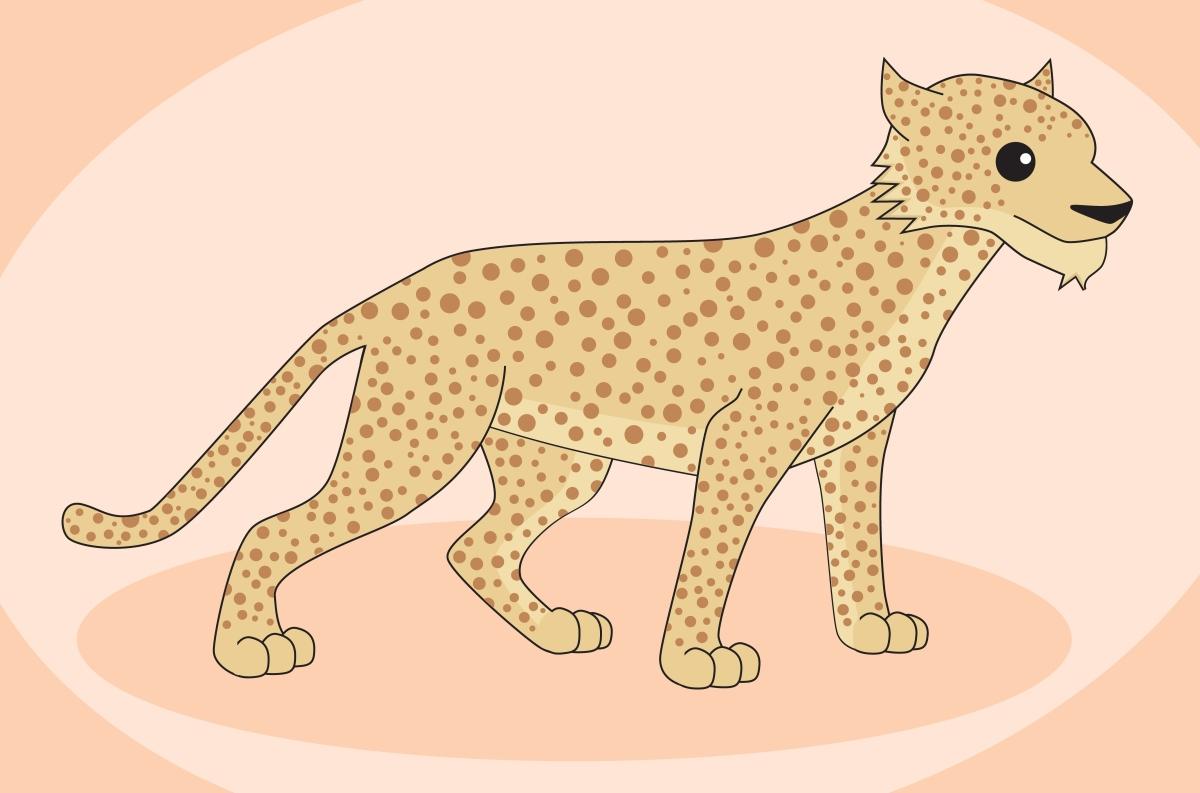 Cheetahs & Leopards & Jaguars